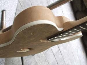 Telecaster custom hollow body