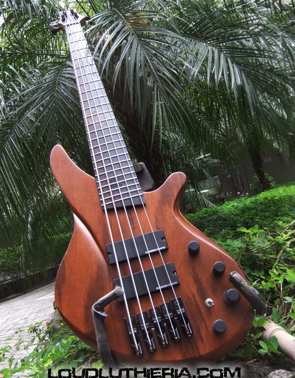 Custom made 5 strings bass